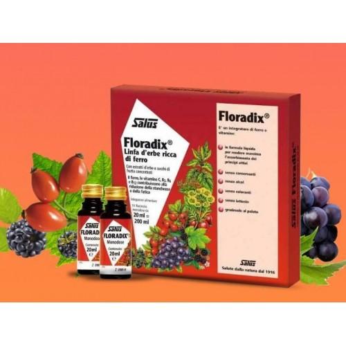 Salus Floradix Integratore Ferro e Vitamine 10Flaconcini
